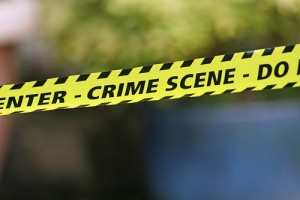 morgan harrington body found