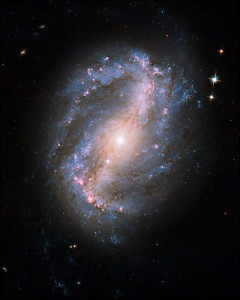 This undated handout image provided by NASA, released Wednesday, Sept. 9, 2009, taken by the refurbished Hubble Space Telescope, shows Barred Spiral Galaxy NGC 6217.