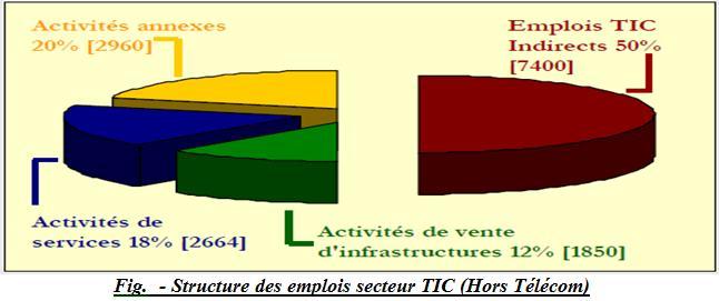 Structure des emplois secteur TIC