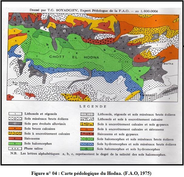 Figure n° 04 : Carte pédologique du Hodna. (F.A.O, 1975)