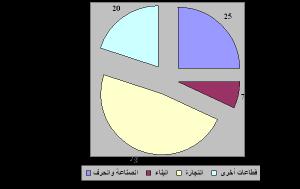 توزيع التشغيل في القطاع غير المهيكل