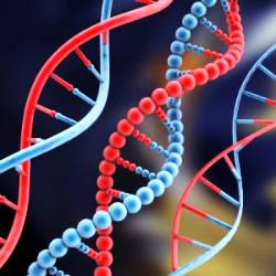 الجينوم أو البصمة الوراثية